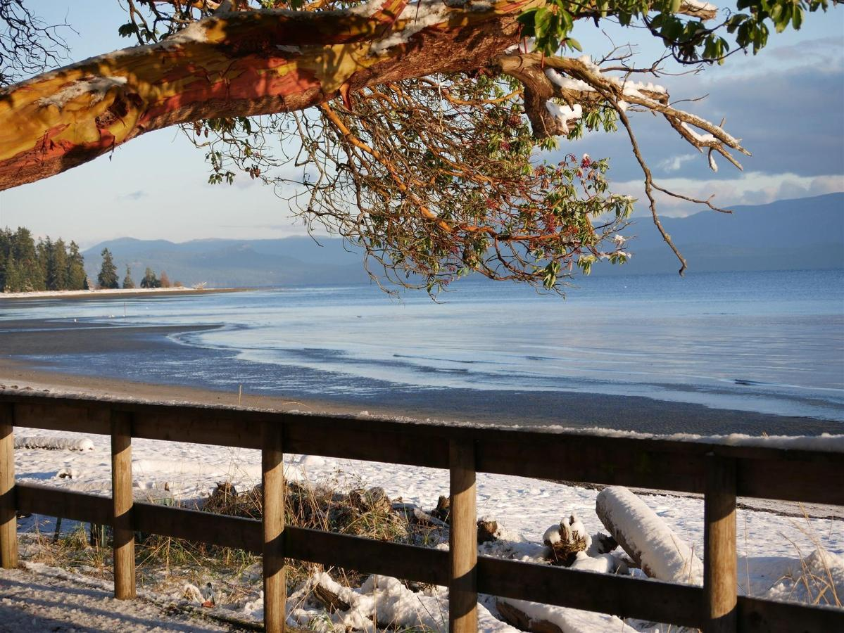 Tigh-Na-Mara Seaside Spa Resort Beach Snow Arbutus