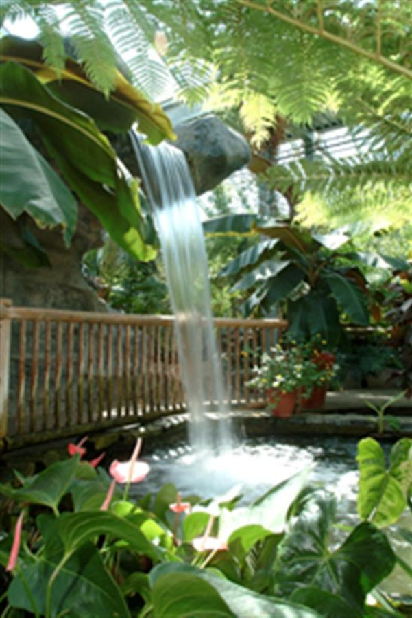butterfly-conservatory.jpg.1024x0.jpg