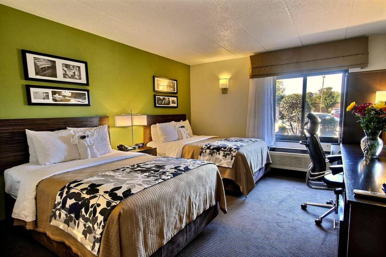 double-guest-room-a1-1.jpg.1024x0.jpg