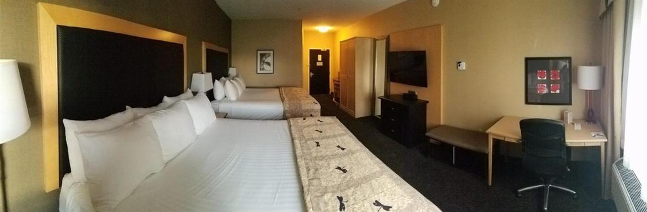 Cambria-дабл-король-room.jpg.1024x0.jpg