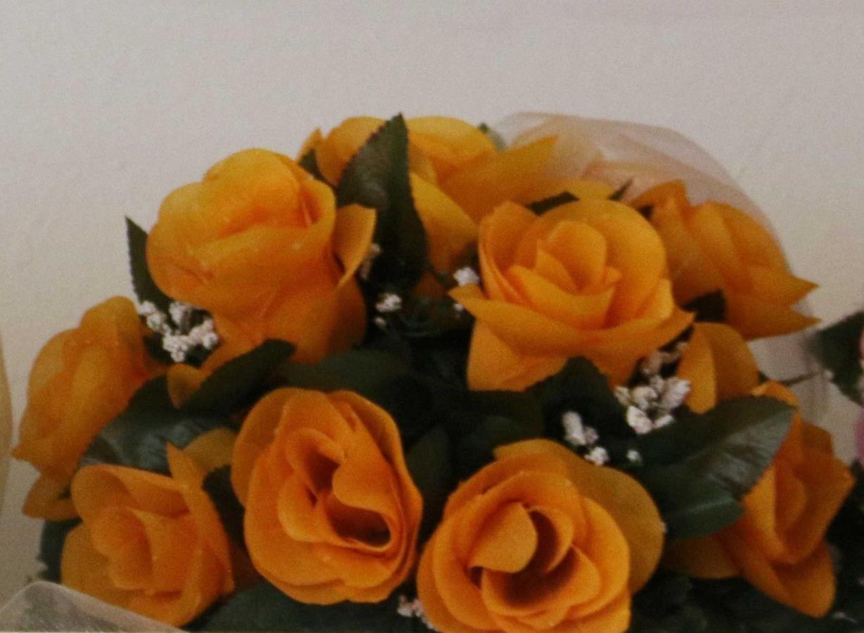 Orange Apricot.jpg