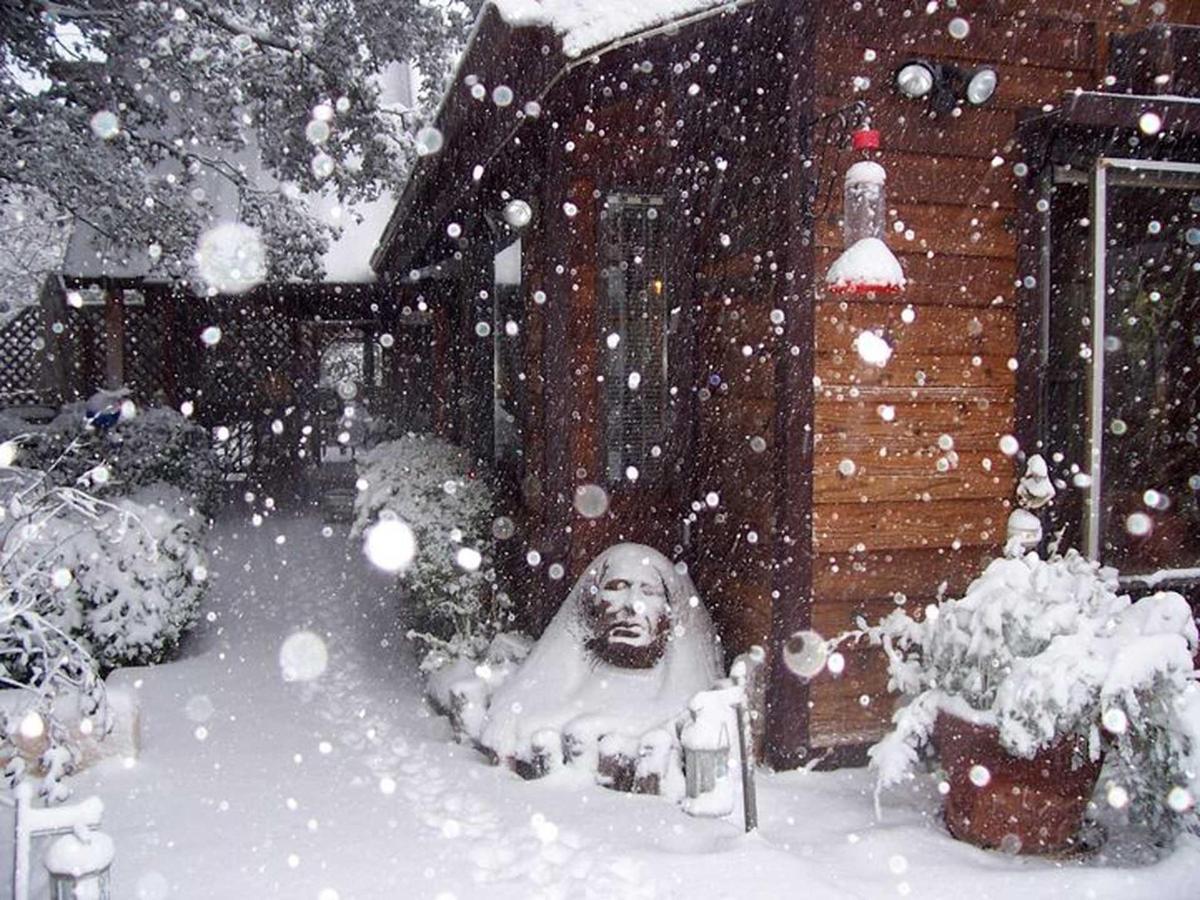 snow-6-1.jpg.1920x0.jpg