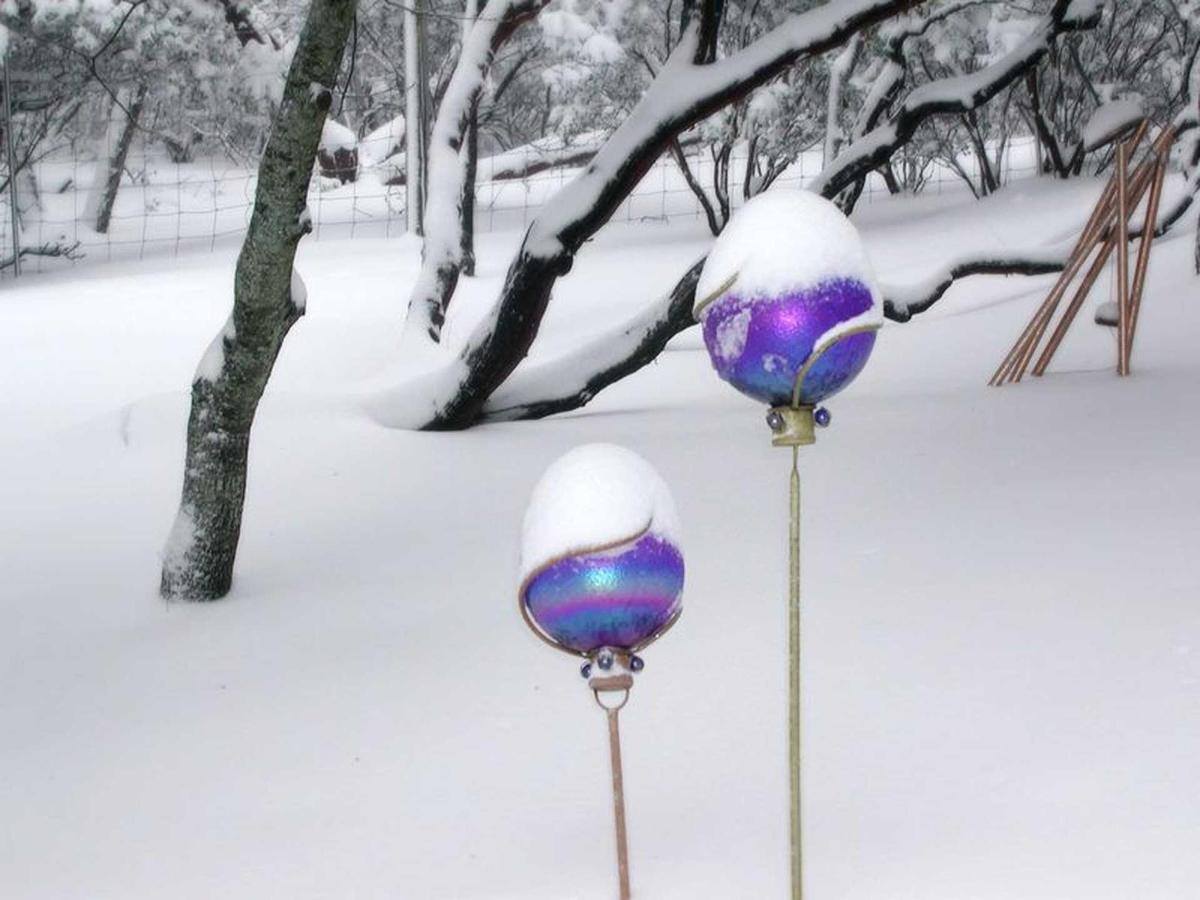 snow-3-1.jpg.1920x0.jpg