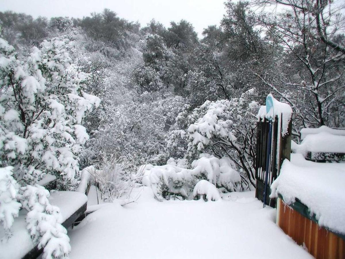 snow-4-1.jpg.1920x0.jpg