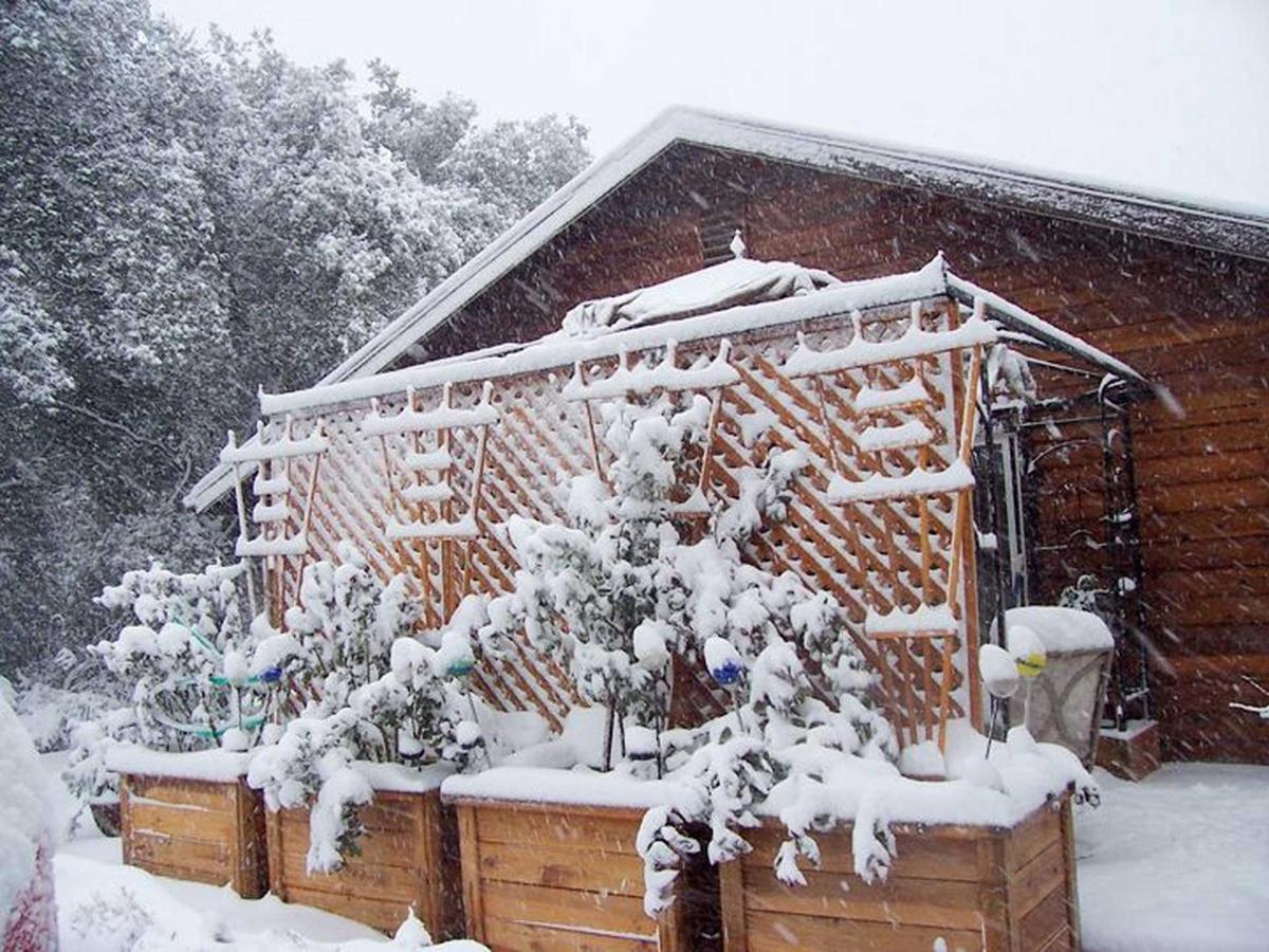 snow-1.jpg.1920x0.jpg