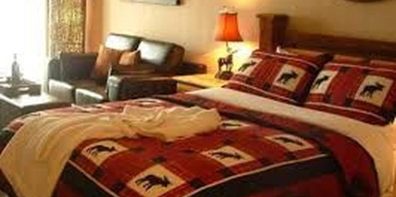 moose-room-4.jpg.1236x617_default.jpg