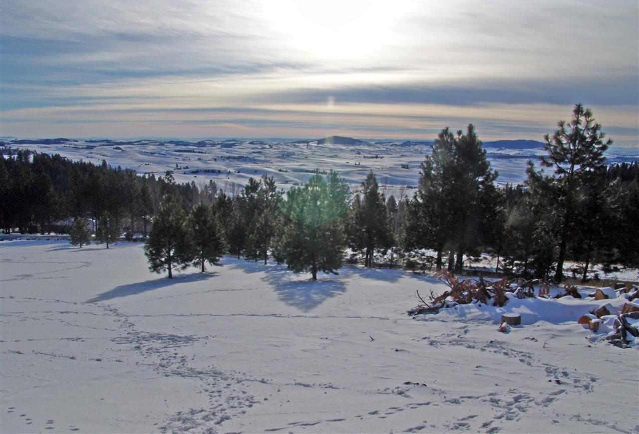 winter1.jpg.1024x0.jpg