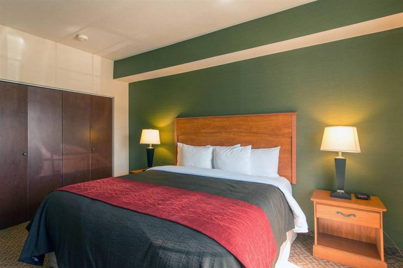 King Bed Efficiency Suite.jpg