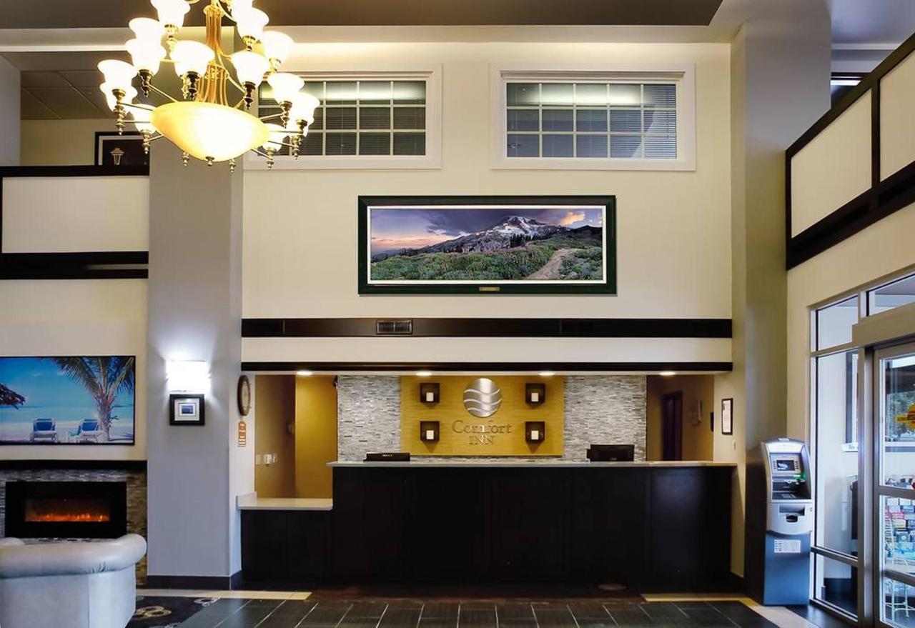 1-lobby-main_paradise.jpg.1024x0.jpg