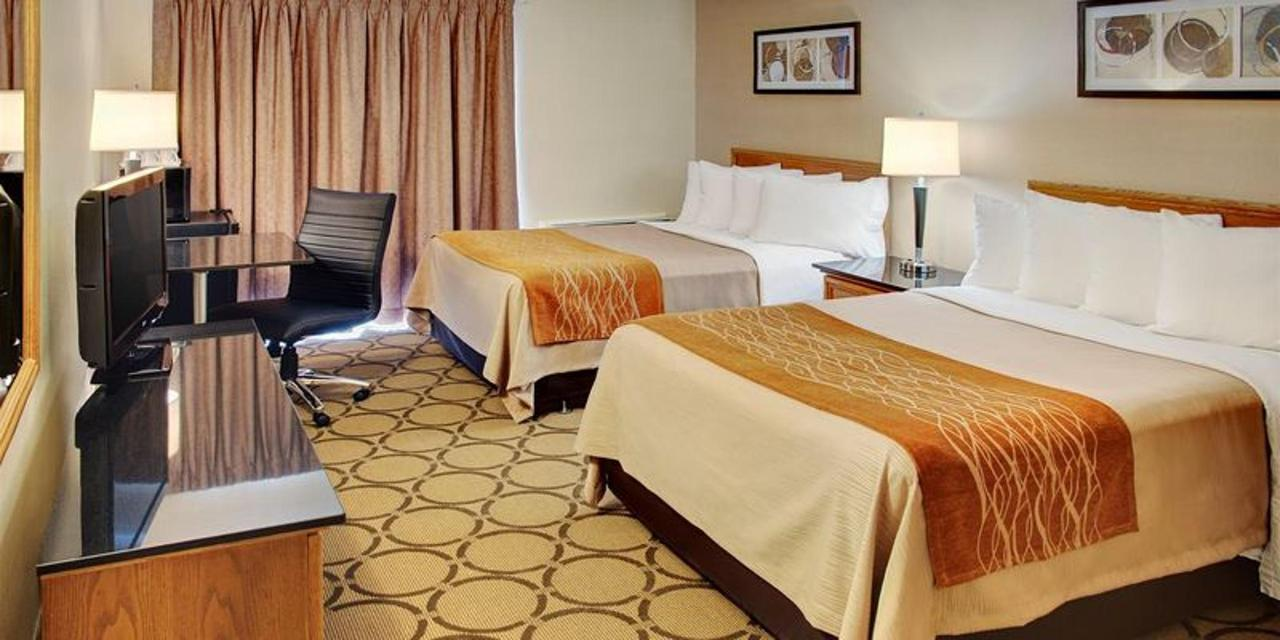 guestroom-with-two-pillowtop-beds.jpg.800x400_default.jpg