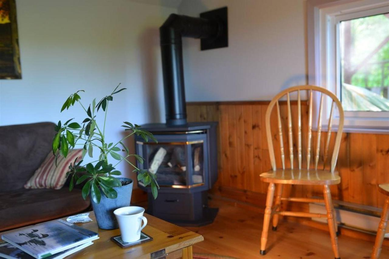guest-only-area-fireplace-june-04-sauble-falls-bed-and-breakfast.jpg.1024x0.jpg