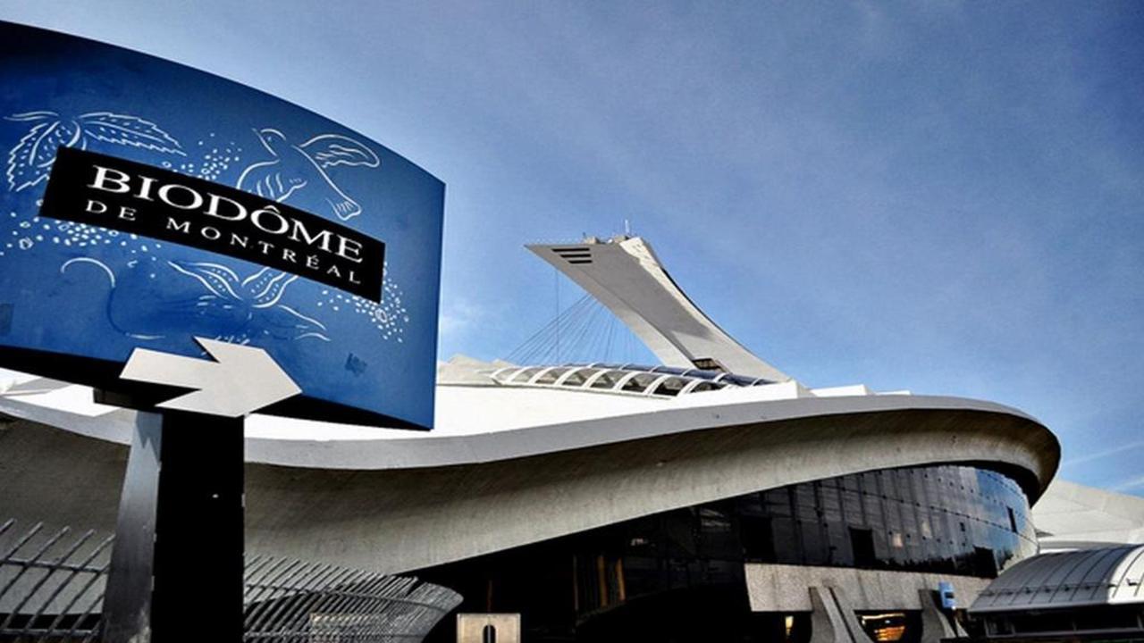 summer-attraction-3-biodome-1-copy-copy.jpg.1024x0.jpg