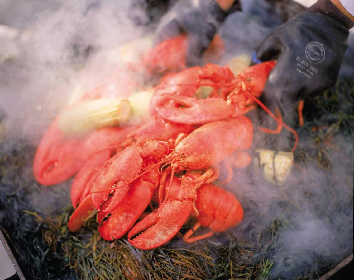steaming-lobster.jpg.1920x0.jpg