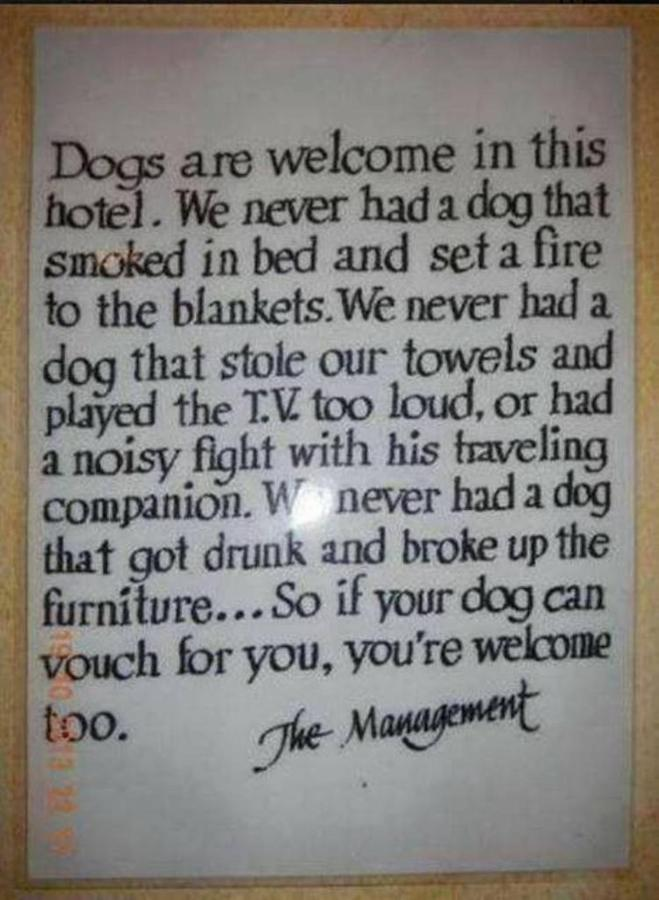 dogs-welcome.jpg.1024x0.jpg