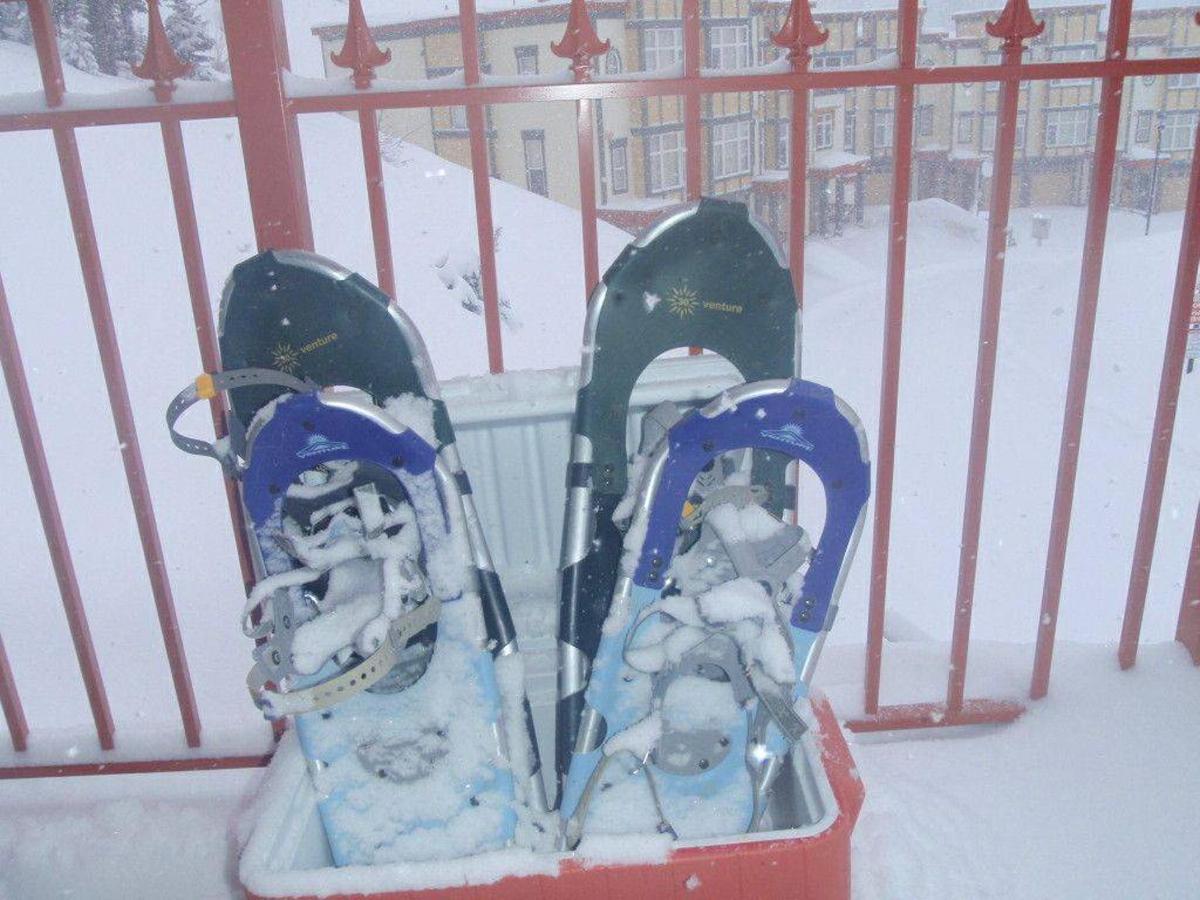 snowshoes.jpg.1024x0.jpg
