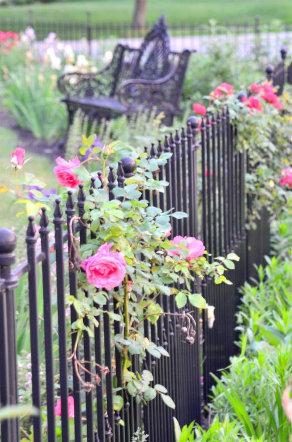 Union Gables Inn Saratoga Springs NY summer roses