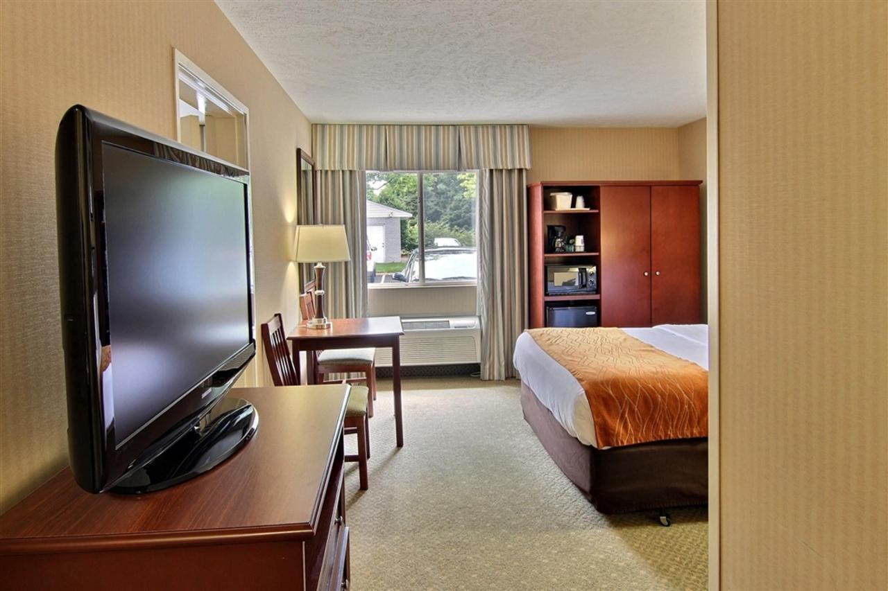 single-queen-room.JPG.1024x0.JPG