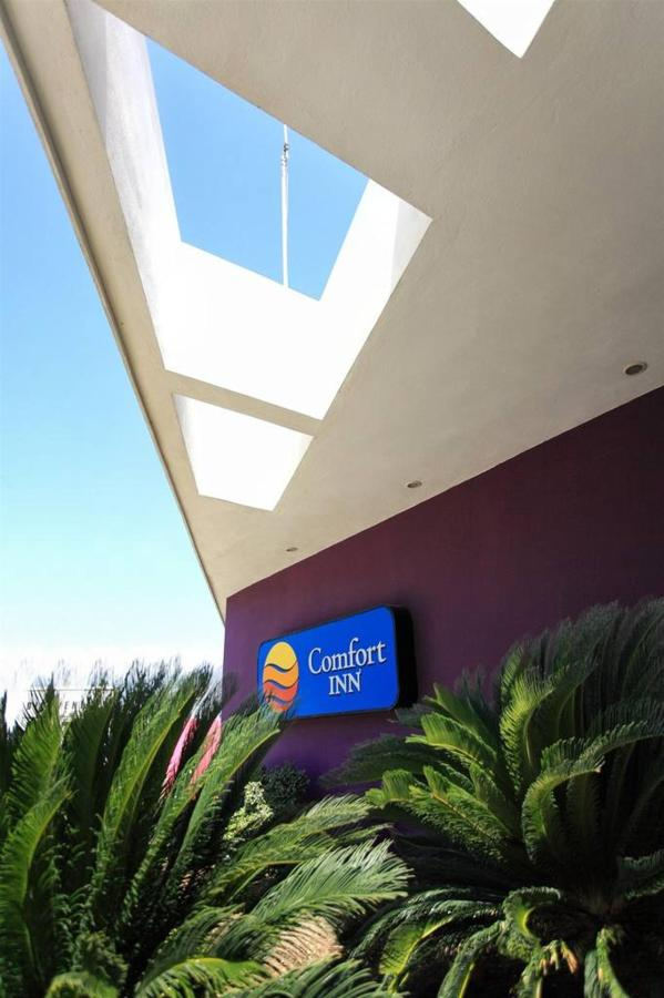 Hotel_CIMonterrey24.jpg