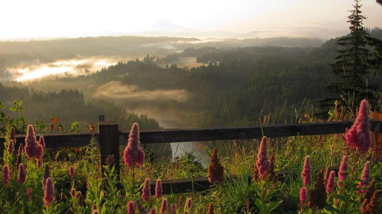 Jonsrud Viewpoint- photo Loree Harrell.jpg