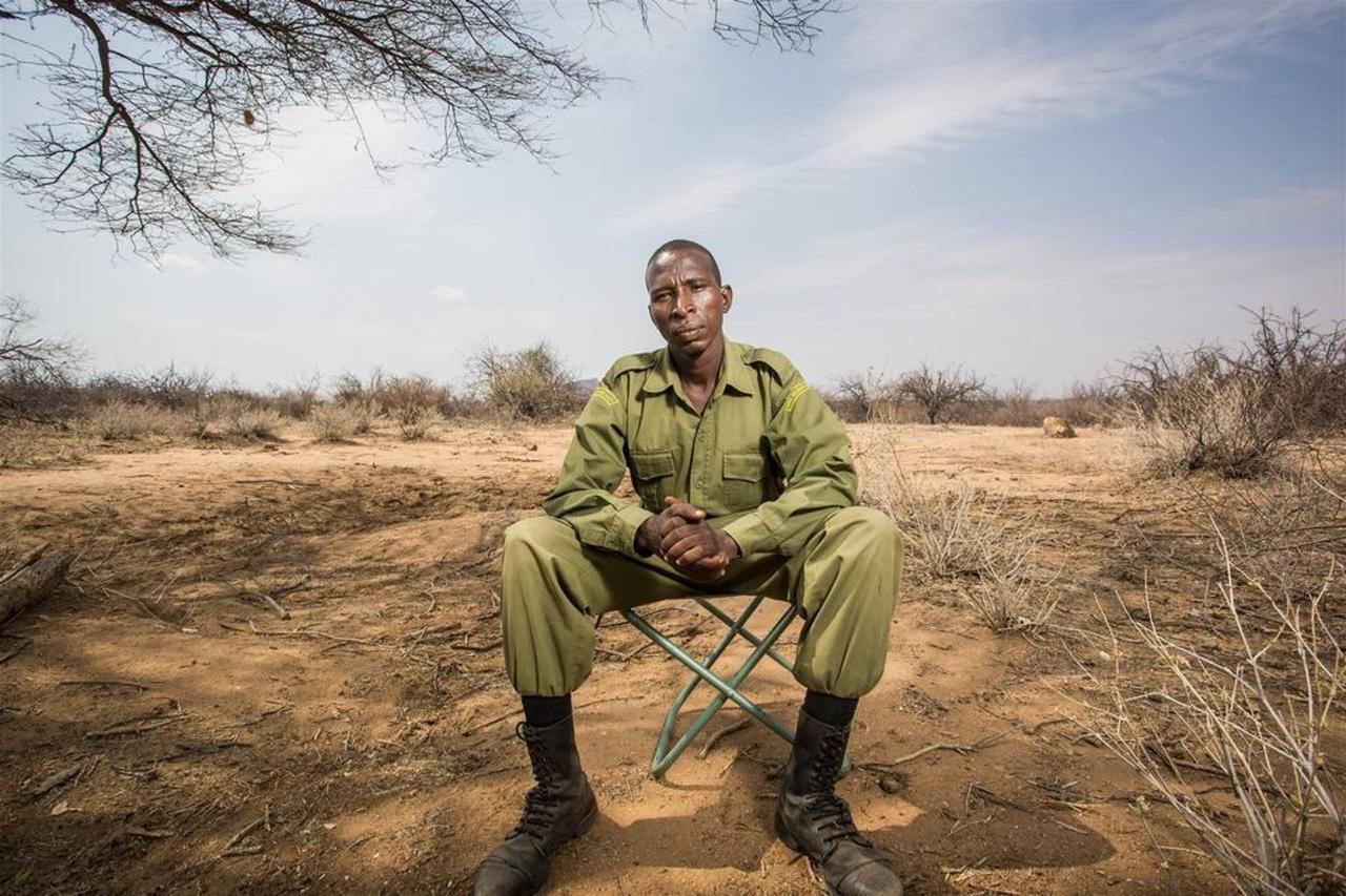 Julius Lurumpe - Rhino Monitor.jpg