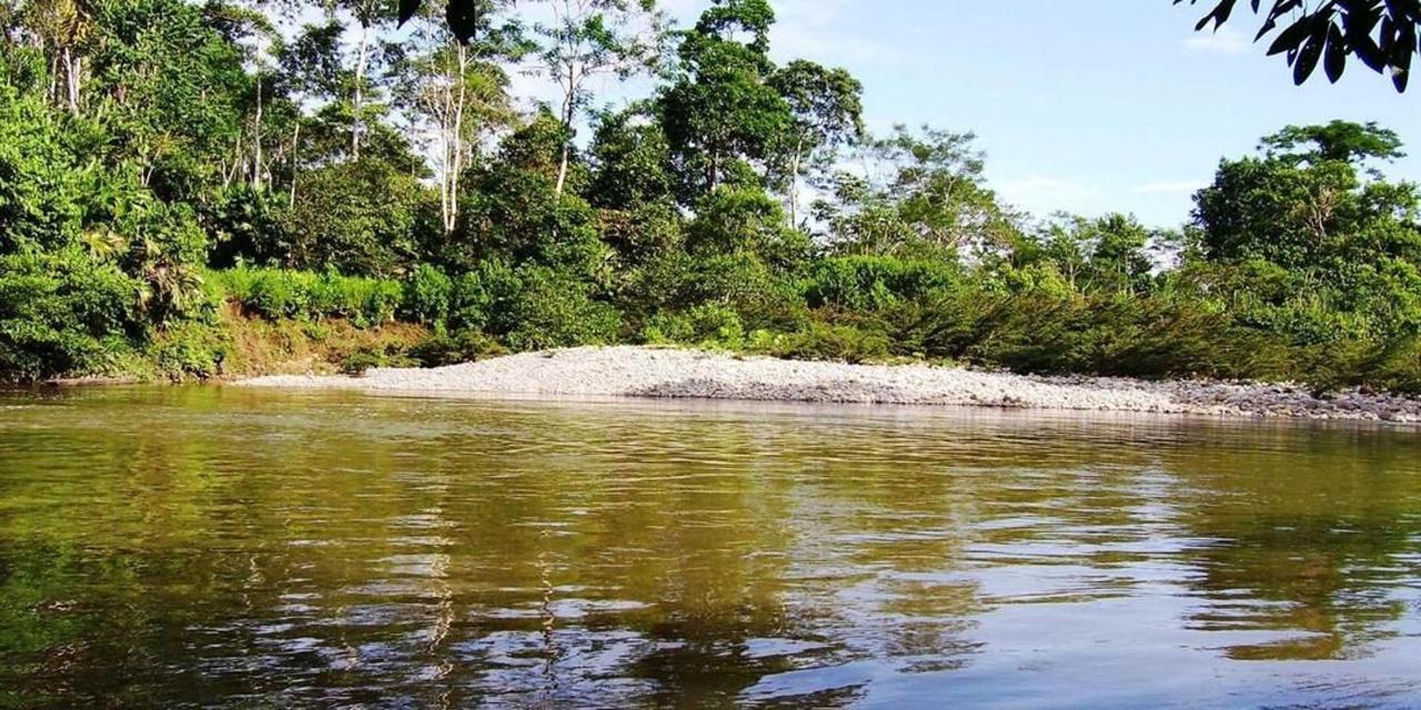 rainforest-jungle-trekking-a-cascade-latas-fine-aroma-of-the-ecuadorian-cacao-converted-in-c-26.jpg.1080x540.jpg