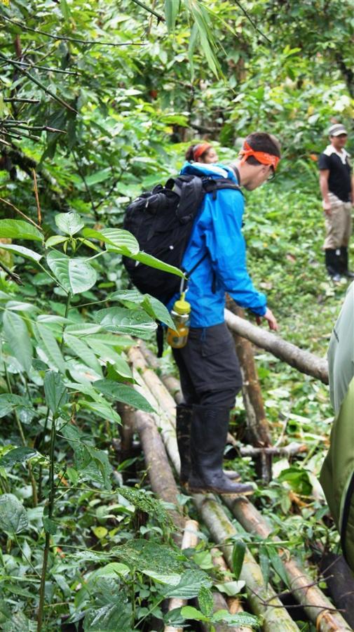 bird-observation-a-medicinal-plants-a-giant-ceibo-tree-a-river-tubbing-a-privat-9.JPG.1024x0.JPG