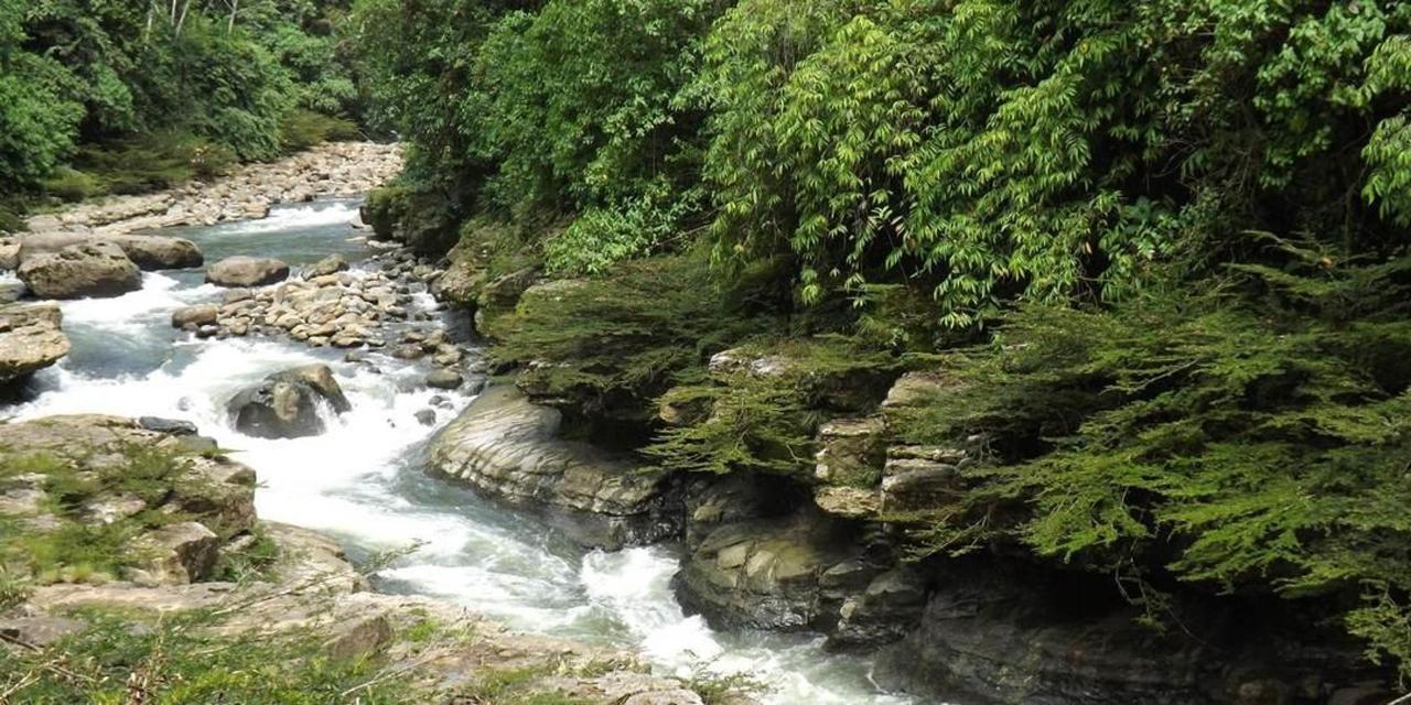 jungle-bike-thrill-waterfalls-expedite-live-rain-forest-kichwa-survivor-swimming-am.JPG.1080x540.JPG