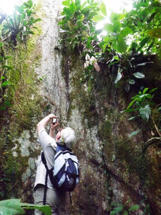 bird-observation-a-medicinal-plants-a-giant-ceibo-tree-a-river-tubbing-a-privat-33.JPG.1024x0 (1).JPG