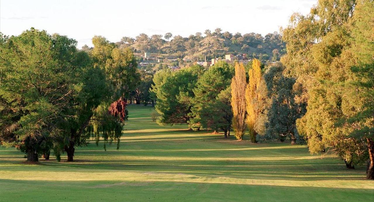 golf11.jpg.1024x0.jpg