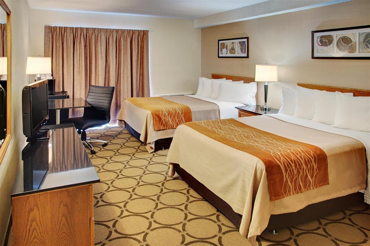 chambre-avec-deux-oreillers-lit.jpg.1024x0.jpg