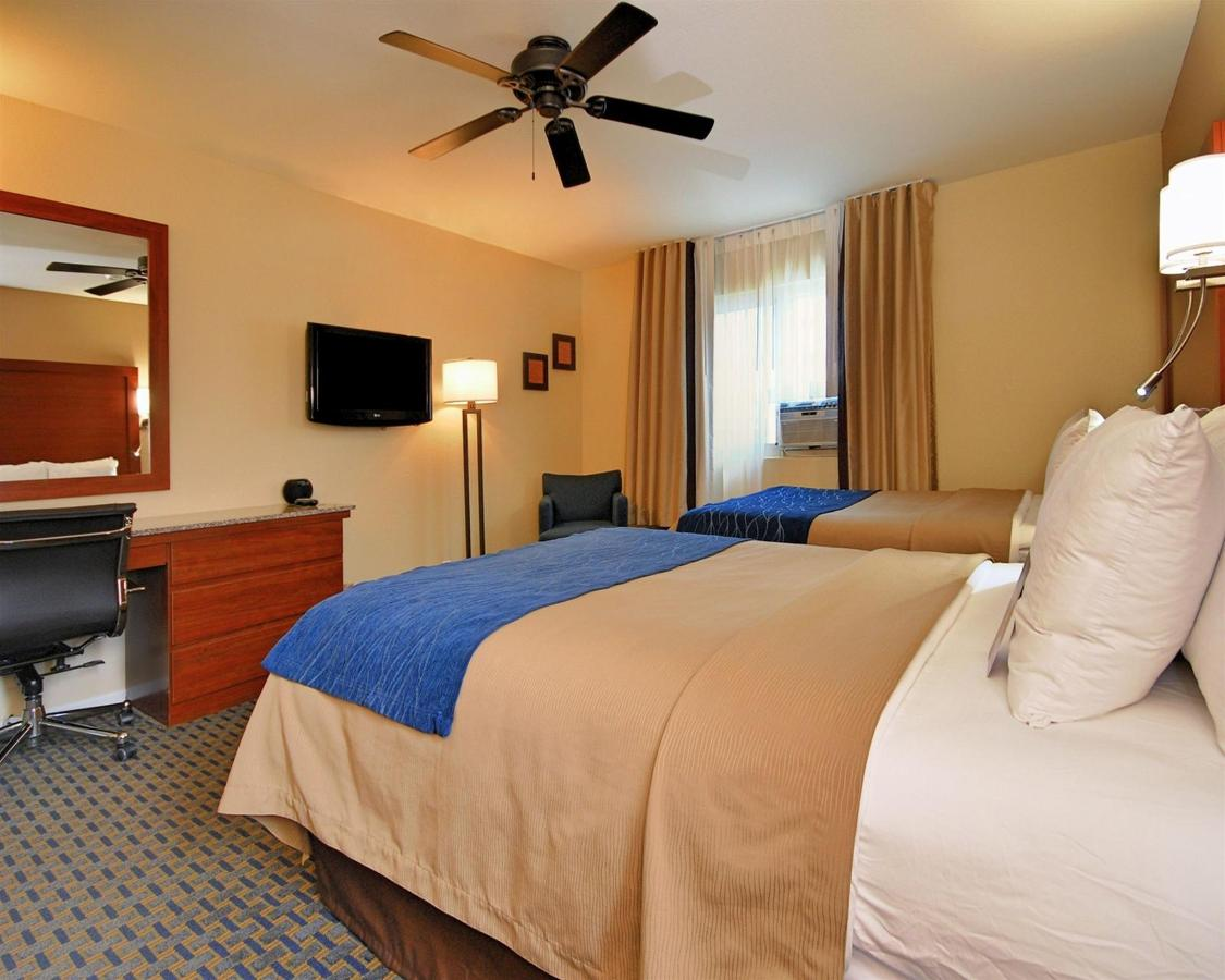 2 camas dobles.jpg