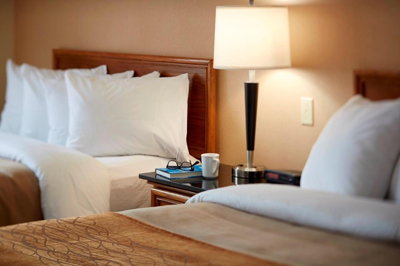 sleep-in-comfort.jpg.1024x0.jpg