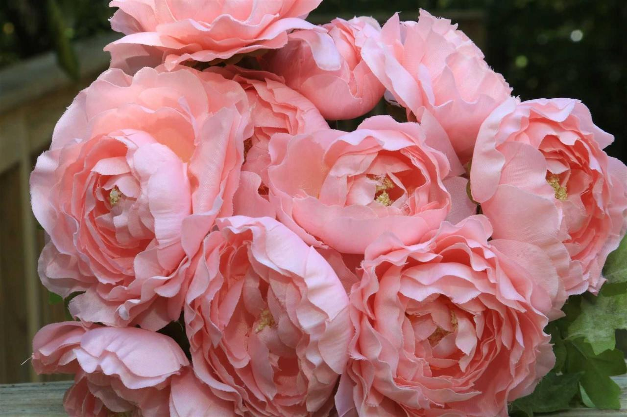flowers-pink-blush.JPG.1920x0.JPG