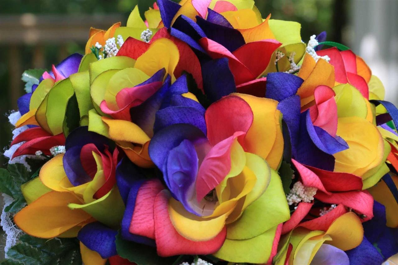 flowers-rainbow-roses.JPG.1920x0.JPG