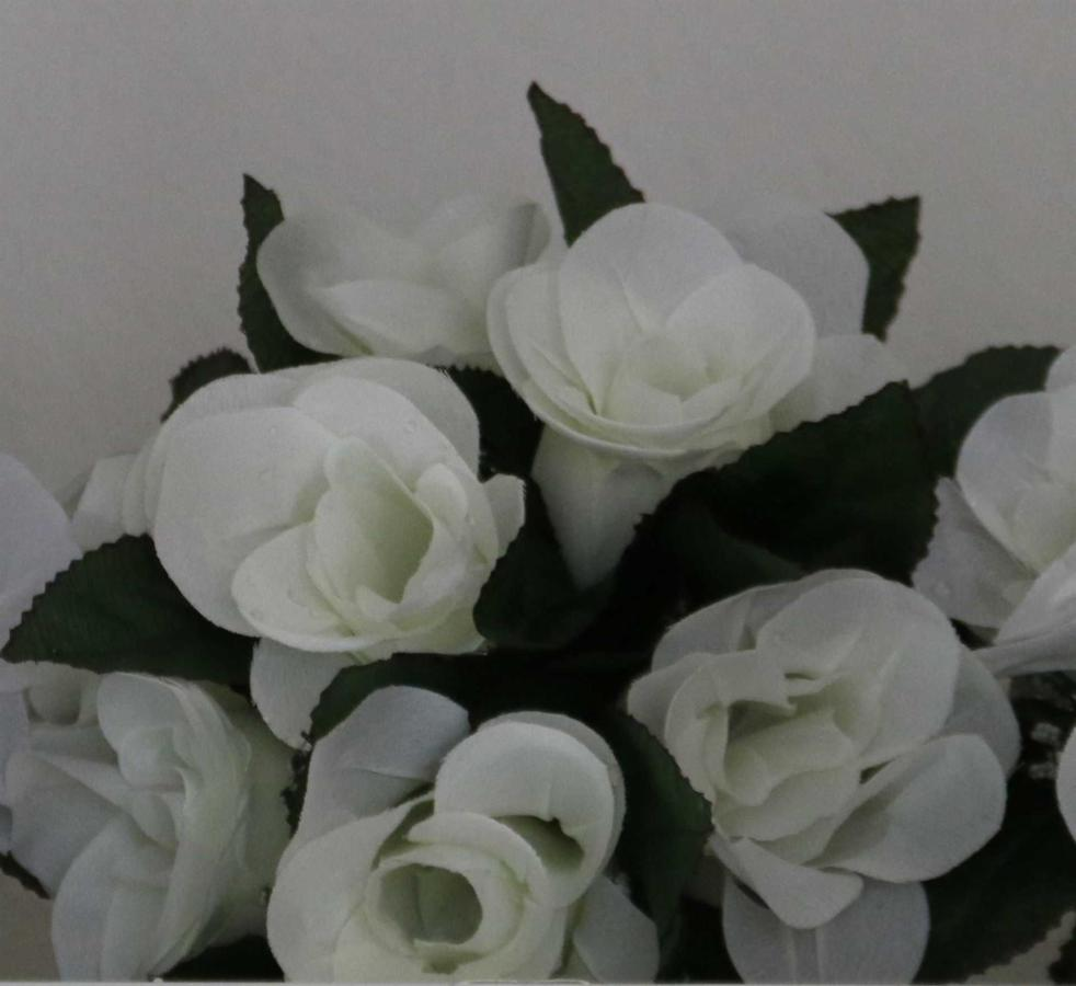 flowers-ivory.jpg.1920x0.jpg