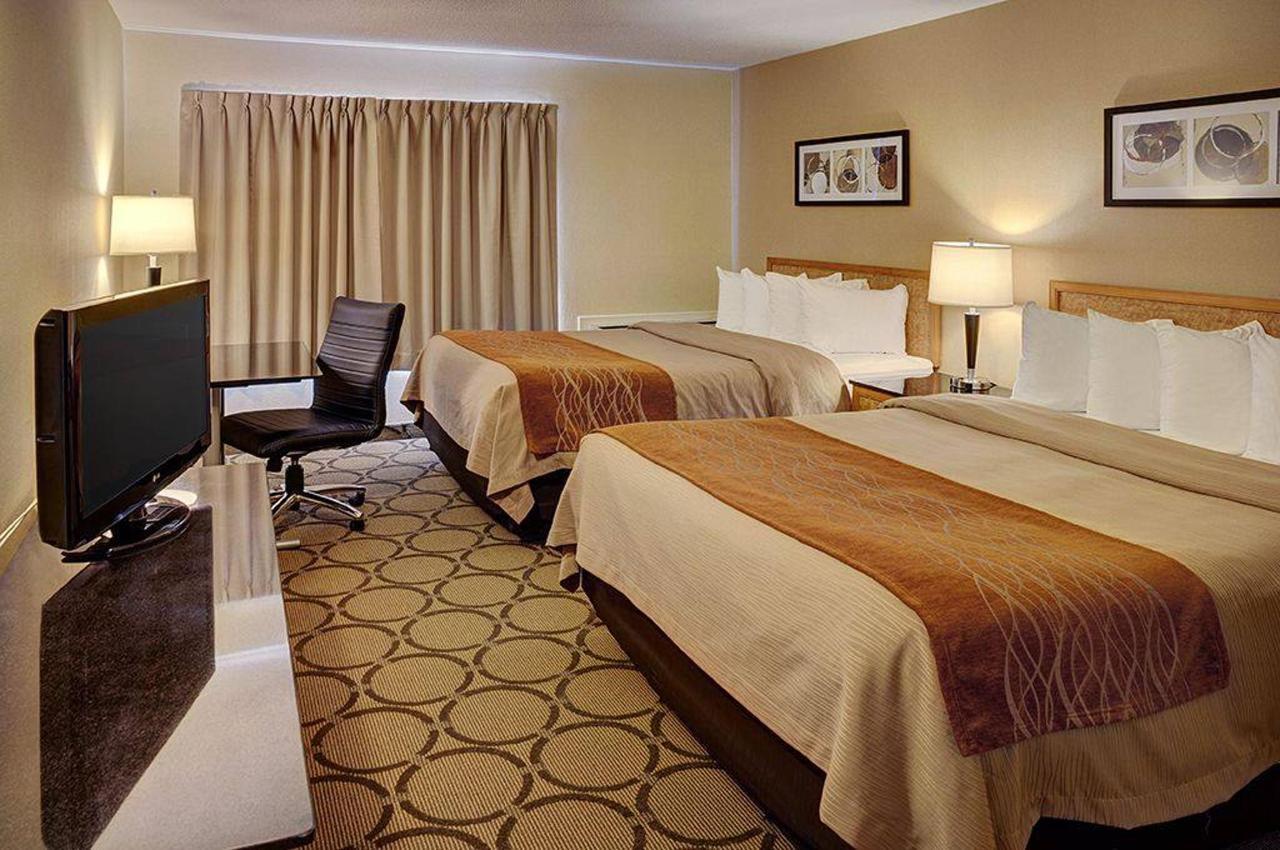 04_-_queen_queen_room.jpg.1024x0.jpg