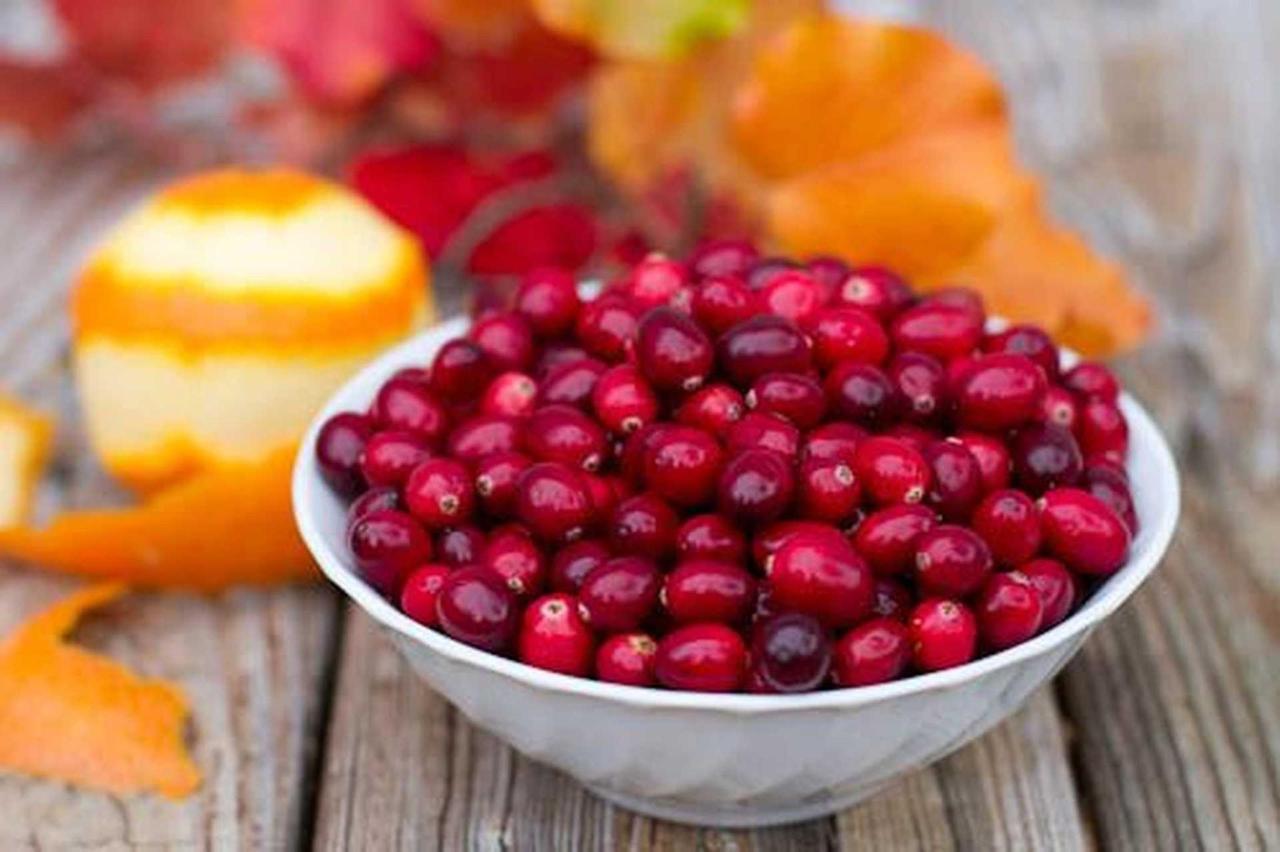 cranberry-sauce-2.jpg.1920x0.jpg