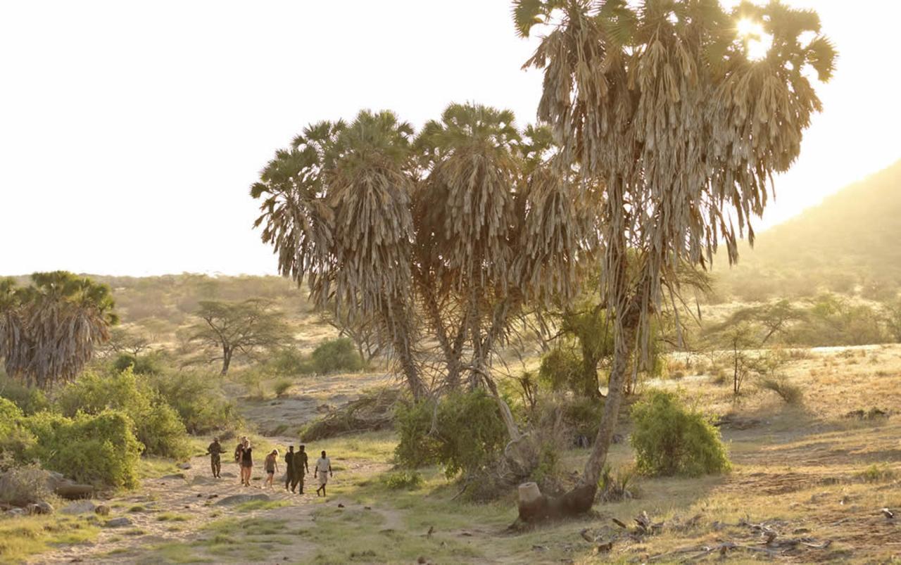 Rhino Tracking with Saruni in Sera Conservancy 1.jpg