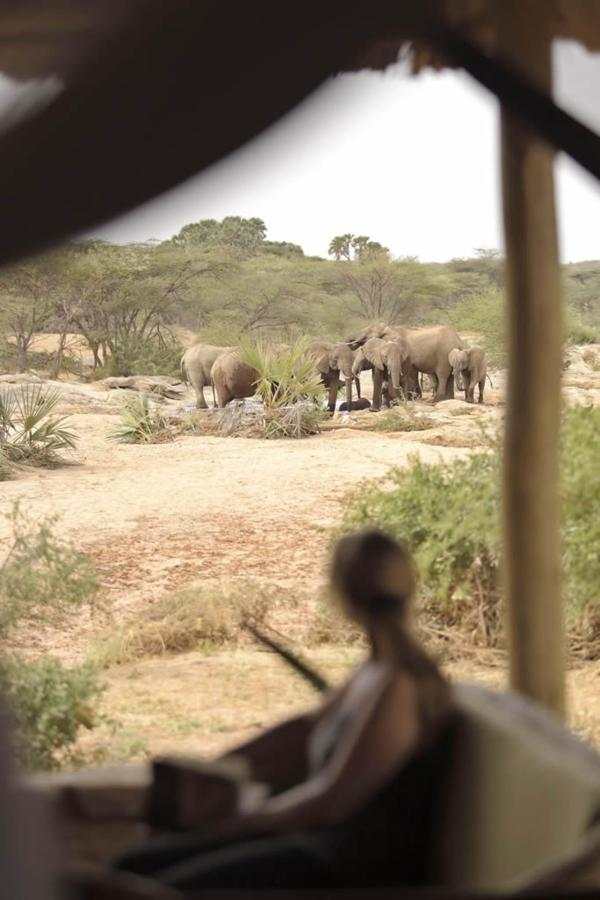 View from Family Banda of waterhole visited daily by ellies.jpg