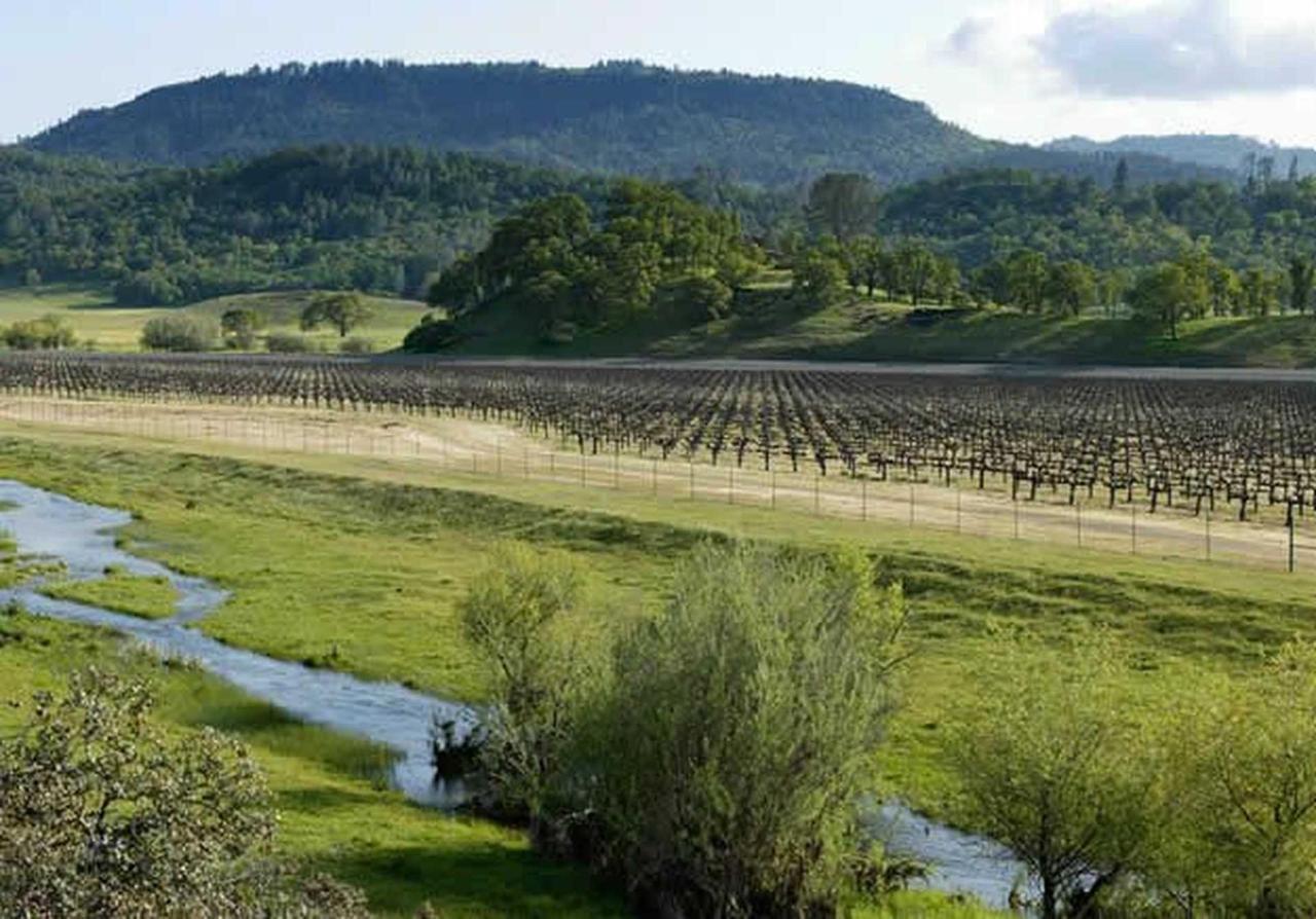 langtry-farms-guenoc-valley-02.jpg.1920x0.jpg