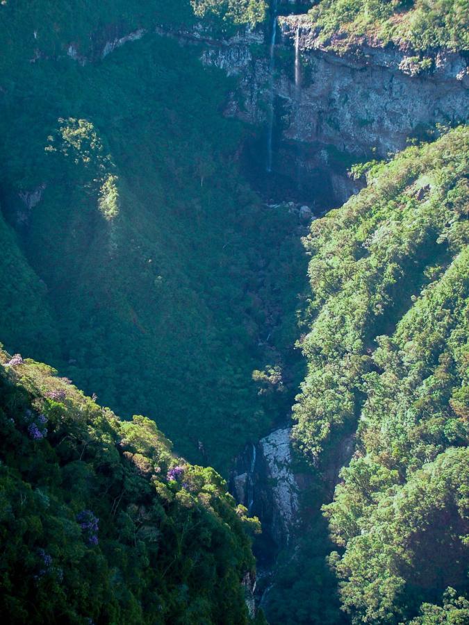 Canyon Indians Coroados.jpg