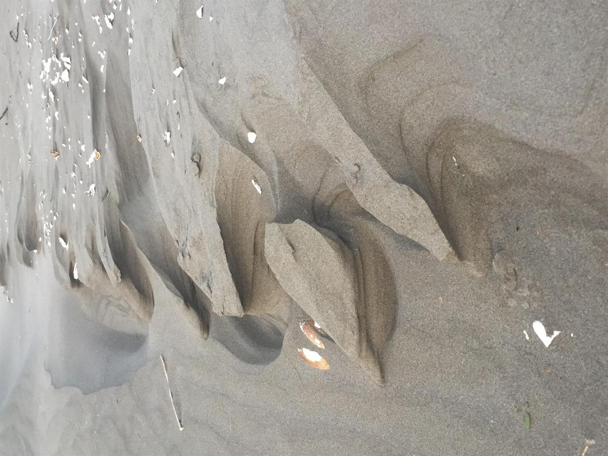 Natures sand castles