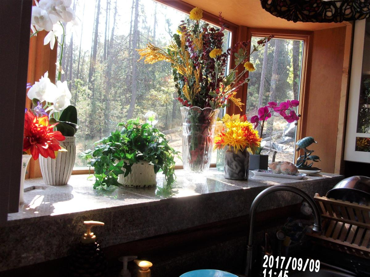 kitchen window.JPG
