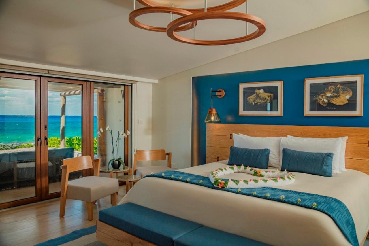Reef Suite.jpg