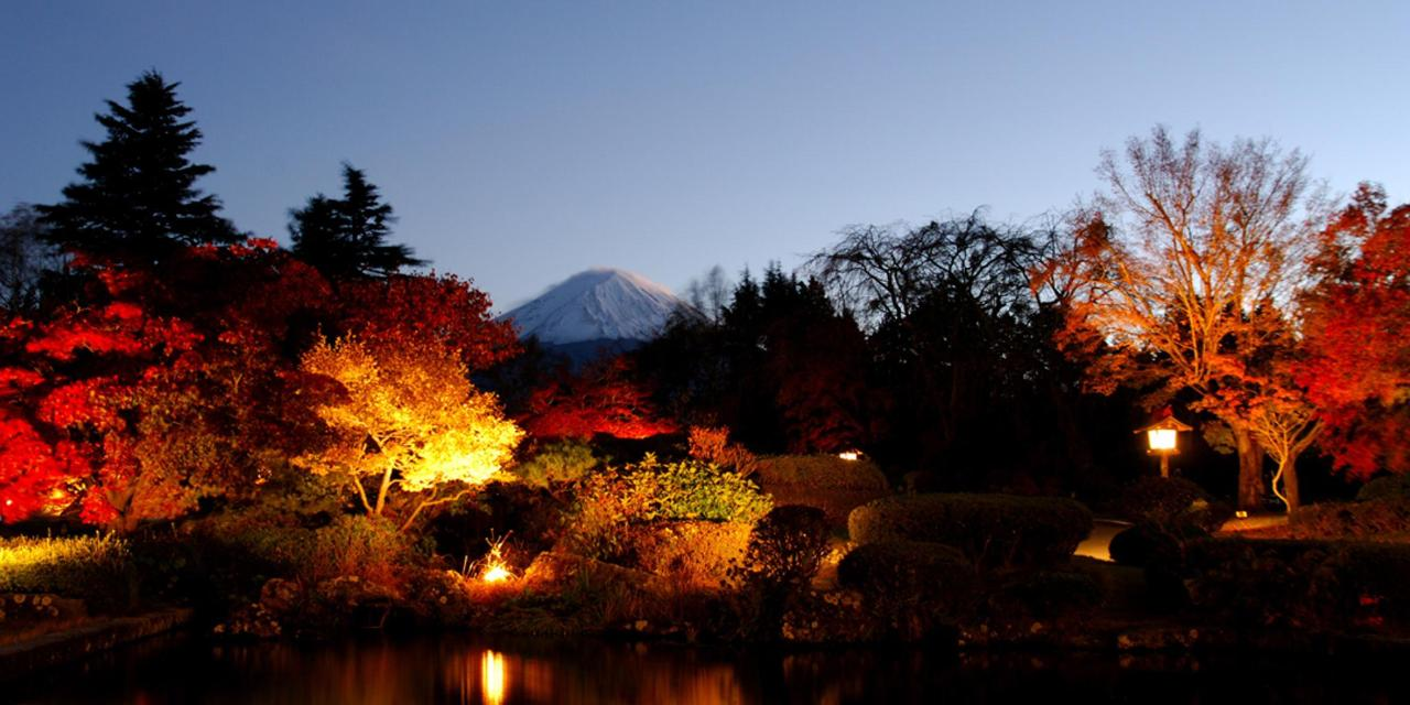 【Autumn】Night scenery