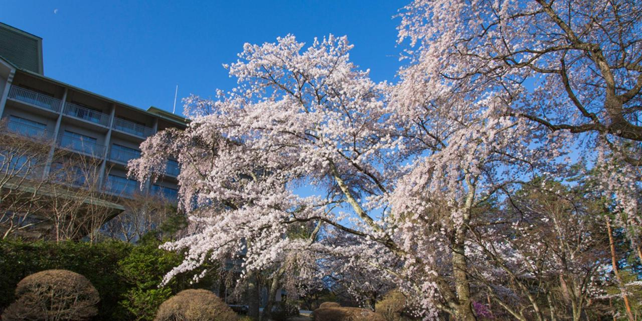 【ฤดูใบไม้ผลิ】โรงแรมฟูจิวิว