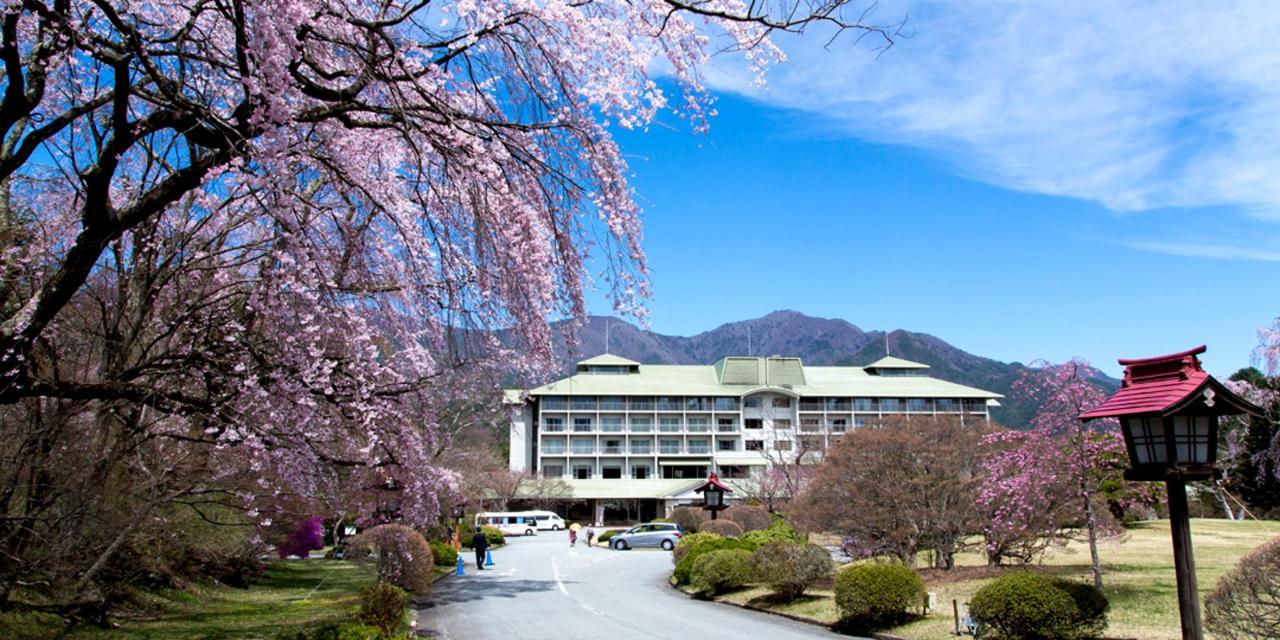 【Frühling】 Der Weg zum Hotel