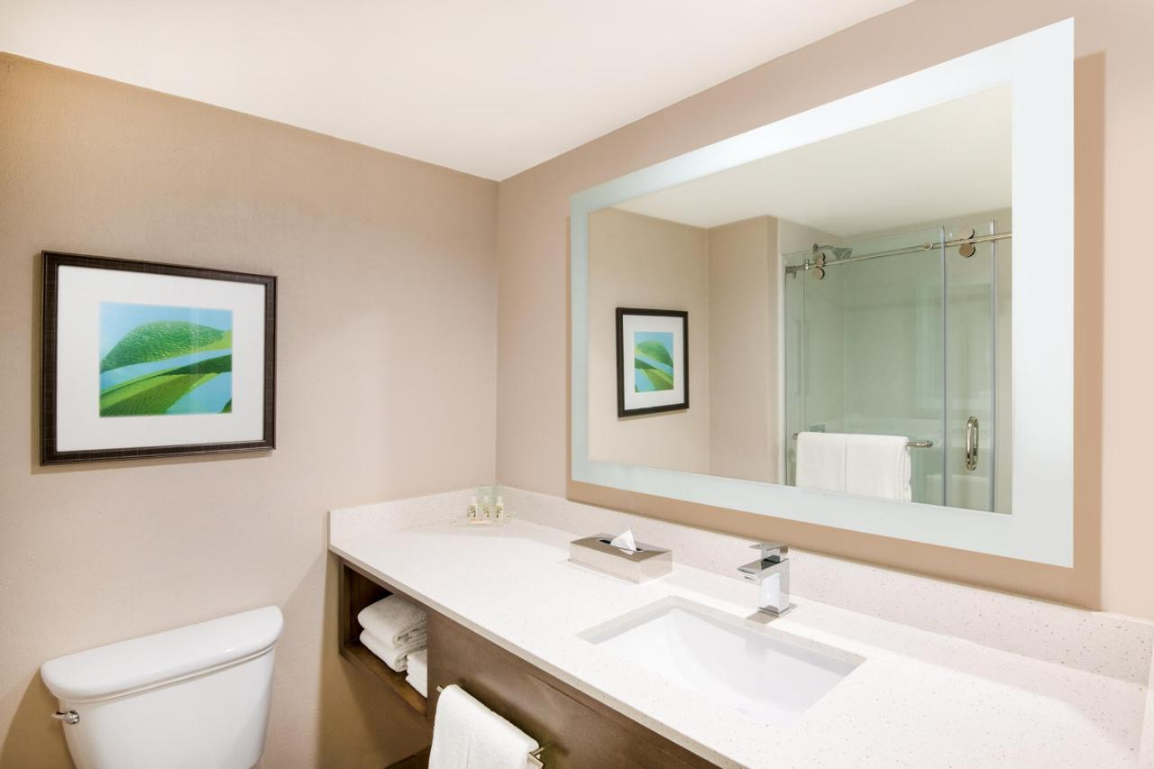 Aruba-Holiday-Inn-Guest-Bathroom.jpg