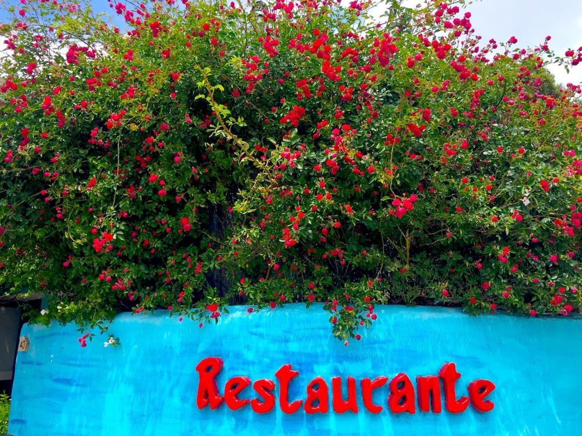2017 Rosas Bandolero IMG_9306_edited.jpg