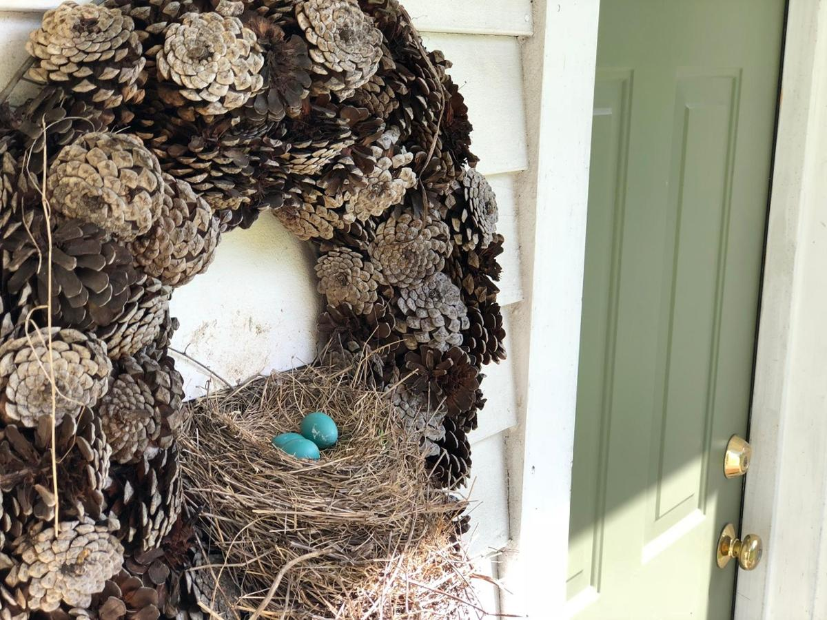 Robin's Nest at Pines Duplex Suite .jpg